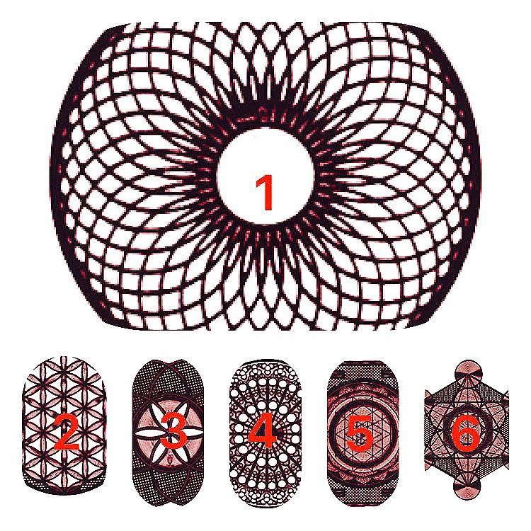 神聖幾何六模組